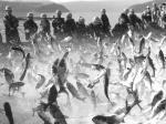 2004年溧阳市美术书法摄影优秀作品选登